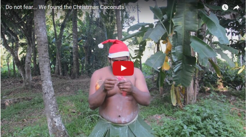 Do not fear… We found the Christmas Coconuts!